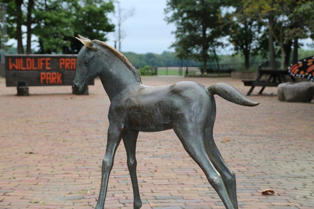 Pony (4)
