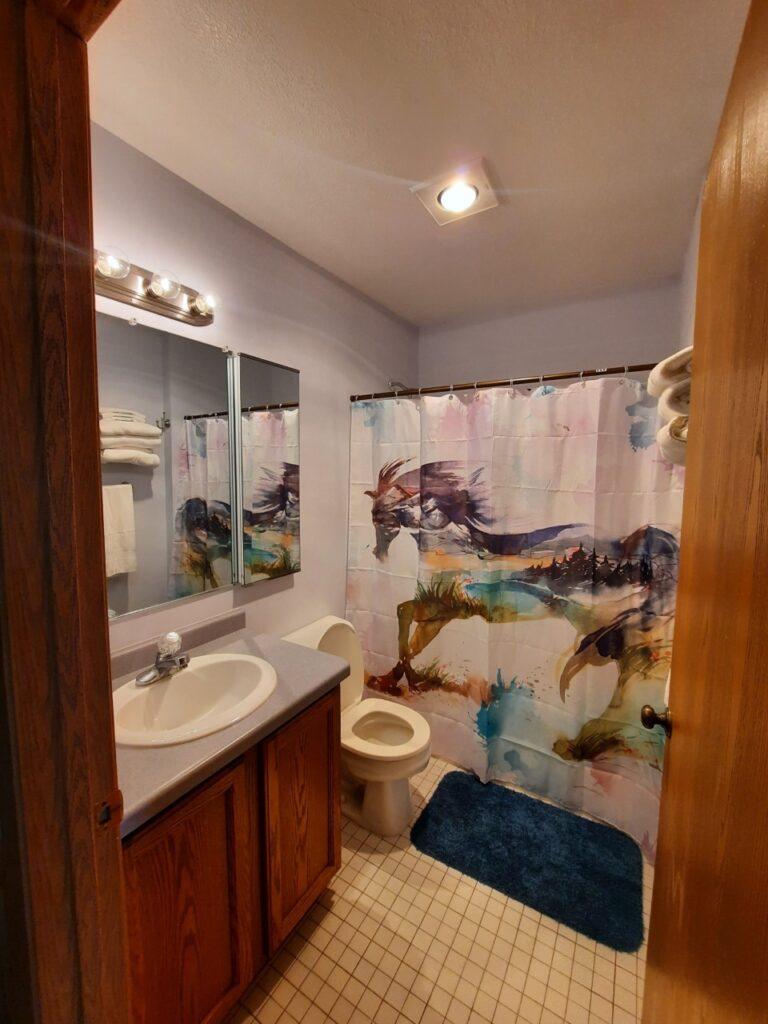 PS 5 Bathroom